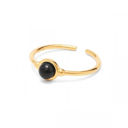 Colour ring gold/black