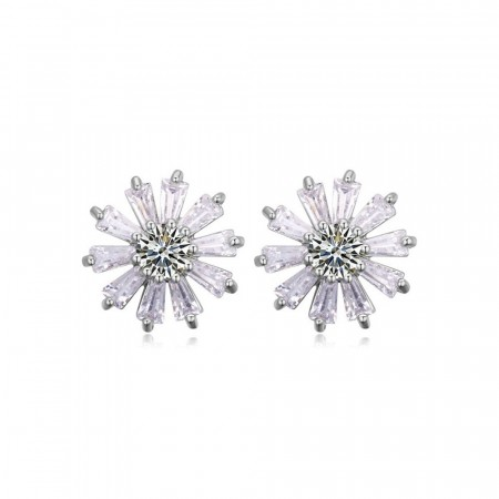 Winter wonderland crystal earrings